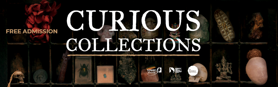 Curious Collections